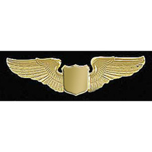 "2"" GOLD WINGS"